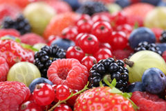 Berry fruits berries collection strawberries, blueberries raspbe. Rries red currants copyspace Stock Photography
