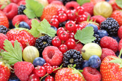 Berry fruits berries collection strawberries, blueberries raspbe Royalty Free Stock Photo