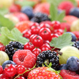 Berry fruits berries collection strawberries, blueberries raspbe Stock Images