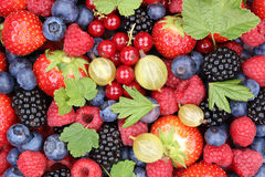 Berry fruits berries collection strawberries, blueberries raspbe Royalty Free Stock Photography