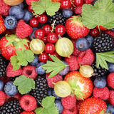 Berry fruits berries fruit collection strawberries, blueberries Stock Image