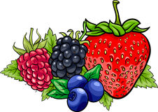 Berry fruits cartoon illustration Royalty Free Stock Photography