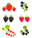 Berry fruits collection. Berry fruits sweet collection. Vector illustration stock illustration