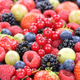 Berry fruits fresh organic berries fruit collection strawberries Stock Photo