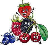 Berry fruits group cartoon illustration Stock Photos
