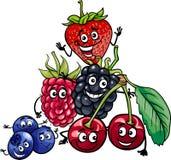 Berry fruits group cartoon illustration. Cartoon Illustration of Funny Berry Fruits Food Characters Group vector illustration