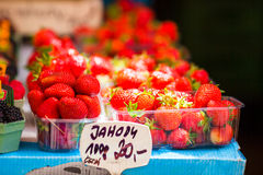 Berry fruits at a marketplace. Blueberries, raspberries, strawberries, cherries and blackberries on the market. Berries fruits at a marketplace. Blueberries Stock Image