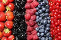 Berry fruits in a row. Berry fruits like strawberries, blueberries, red currants, raspberries and blackberries in a row Royalty Free Stock Images