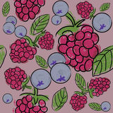 Berry fruits seamless pattern Stock Images