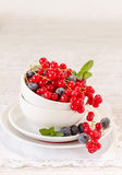 Berry fruits on white bowl Stock Photos