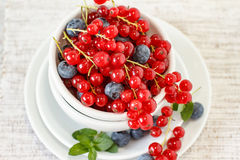 Berry fruits on white bowl Royalty Free Stock Photography