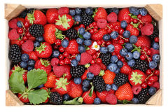 Berry fruits in wooden box with strawberries, blueberries and ch Stock Image