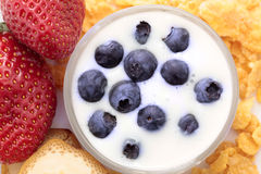 Berry fruits with yogurt Royalty Free Stock Photo