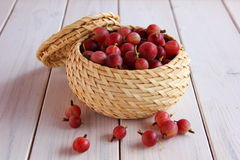 Berry gooseberry in a small basket Stock Images