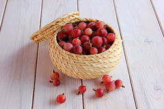 Berry gooseberry in a small basket Royalty Free Stock Images