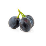 Berry grape. On white background Royalty Free Stock Images