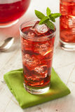 Berry Hibiscus Ice Tea de restauración frío Fotos de archivo