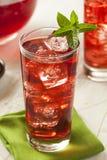 Berry Hibiscus Ice Tea de restauración frío Imagen de archivo