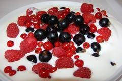 Berry ice cream. Deliciousjuicy berriesinice cream,fruitsincluderaspberries, black currantsandred currants,desserton a white background Stock Photography