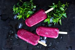 Berry ice cream. Ice cream from black currant, blueberries, raspberries. Homemade of raspberries and currants, cooked with special forms royalty free stock photography