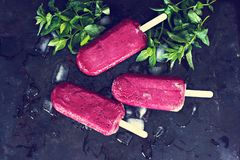 Berry ice cream. Ice cream from black currant, blueberries, raspberries. Homemade of raspberries and currants, cooked with special forms royalty free stock images