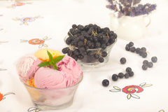 Berry ice cream with fresh blueberries. And  lavender flower decoration Royalty Free Stock Photography