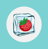Berry in ice cube flat design Royalty Free Stock Images