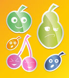 Berry icon set. Labels with berries. apple, pear, plum, apricot, cherry Flat style. Vector Royalty Free Stock Photography