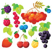 Berry Icons Stock Photography
