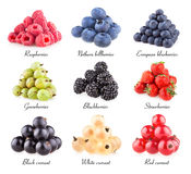 Berry images collection Stock Photos