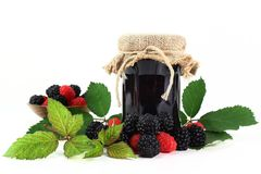 Berry jam Royalty Free Stock Photos