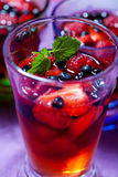 Berry jelly in a glass. Closeup of cold fruit jelly in a glass Stock Images