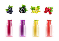 Berry Juice Realistic Set Royalty Free Stock Photography