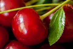 Berry of juicy ripe cherries closeup Stock Photo
