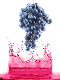 Berry  jumping Stock Photography