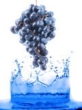 Berry jumping Royalty Free Stock Photo
