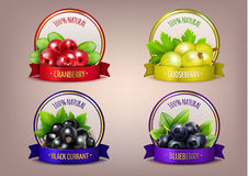 Berry Labels Realistic Eco Collection Fotografie Stock Libere da Diritti