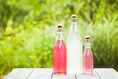 Berry lemonade Stock Photography