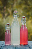 The berry lemonade Royalty Free Stock Images
