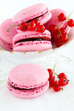 Berry macaroon Stock Photography