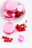 Berry macaroon Royalty Free Stock Photos