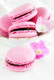 Berry macaroon. With red currant Stock Photos