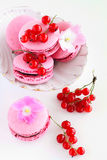 Berry macaroon. With red currant Stock Photo