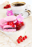 Berry macaroon Stock Images