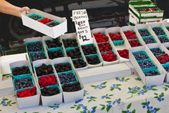 Berry Market. Vendor at a farmers market offers a variety of berries for sale Stock Photos
