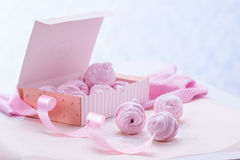 Berry marshmallow in a gift box on a pink background Royalty Free Stock Photos