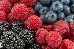 Berry Mix. Closeup of a mix of raspberries, blueberries and blackberries Stock Images