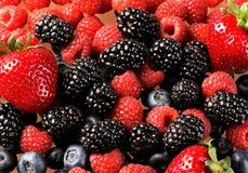 Free Berry Mix 2 Stock Image - 22276011