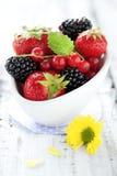 Berry Mix Stock Photo