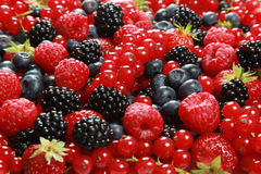 Berry Mix. On a table there are strawberries, bilberries, red currants, raspberries and blackberries royalty free stock photos